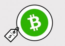precio bitcoin cash